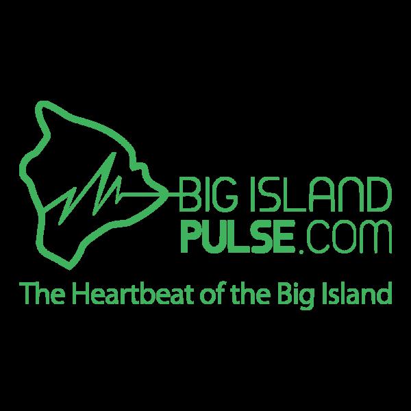 Big Island Pulse Logo Image