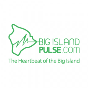 square-logo-pulse