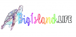 big-island-life-logo